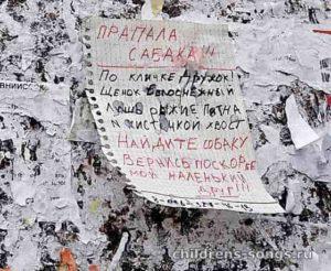 текст песни «Пропала собака по кличке Дружок»