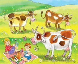 тест песни «33 коровы»